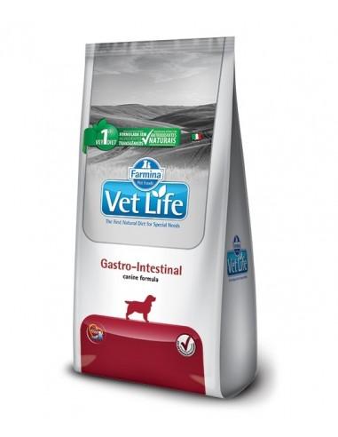 Vet Life Gastrointestinal Canine - Perros